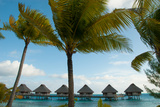 Palm Trees and Vacation Cottages over Water on Bora Bora Photographic Print by Karen Kasmauski