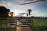 Sunset at the Gate of a Bonito Farm, with Rolling Hills in the Background Reproduction photographique par Alex Saberi
