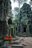 Theraveda Buddhist Monks at the Ta Prohm Temple in the Angkor Complex Valokuvavedos tekijänä Kike Calvo
