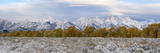 The Grand Teton Mountain Range Covered in Snow During the Fall Fotografisk tryk af Barrett Hedges