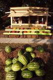 An Outdoor Vegetable Stand in Duck, North Carolina Reproduction photographique par Chris Bickford