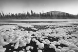 A Boreal Forest and Ogilvie River with Snow Photographic Print by Peter Mather