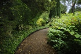 A Garden Path at Sissinghurst Castle Fotografisk trykk av Jim Richardson