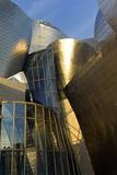 The Guggenheim Museum in Bilbao Photographic Print by Tino Soriano