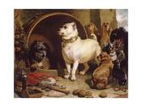 Alexander and Diogenes Giclée-tryk af Edwin Henry Landseer
