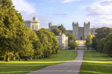 The Long Walk with Windsor Castle in the Background, Windsor, Berkshire, England Photographic Print by Charlie Harding