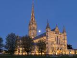 Salisbury Cathedral, Salisbury, Wiltshire, England, United Kingdom, Europe Reproduction photographique par Charles Bowman