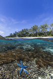 Above and Below View of Coral Reef and Sandy Beach on Jaco Island, Timor Sea, East Timor, Asia Fotografie-Druck von Michael Nolan