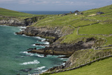 Sheep Fences and Rock Walls Along the Dingle Peninsula Photographic Print by Michael Nolan