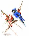 Blue Jay 13 Poster par Suren Nersisyan