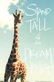Stand Tall Láminas por Susan Bryant