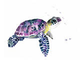 Sea Turtle Print by Suren Nersisyan