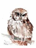 Owl 5 Posters van Suren Nersisyan