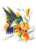 Hummingbird 6 Print by Suren Nersisyan