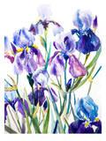 Iris Affiche par Suren Nersisyan