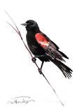 Red_Winged Blackbird Affiches par Suren Nersisyan
