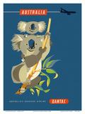 Australia - Koala Bears Art by Harry Rogers
