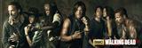 Walking Dead - Season 5 Plakater
