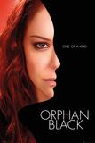 Orphan Black Season 2 - Sarah Posters
