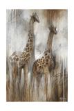 Giraffe Study Reproduction procédé giclée par Rikki Drotar
