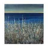 Shoreline Flowers II Giclée-Druck von Tim O'toole