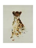 Cheetah Lámina giclée por Sydney Edmunds