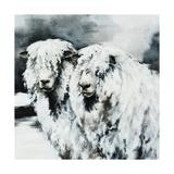 Sheepish Giclee Print by Sydney Edmunds