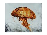Jelly fish Giclée-Druck von Sydney Edmunds