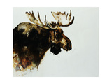 Moose Giclee Print by Sydney Edmunds