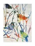 Birdsong Shadows II Giclee Print by Farrell Douglass