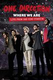One Direction - Movie Lámina