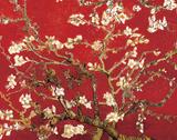 Almond Blossom - Red Posters van Vincent van Gogh