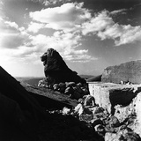 Statue of a Lion, Part of the Remains of the Tomb of Antiochus I, on the Summit of Nemrut Dagi Photographic Print by Pietro Ronchetti