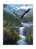Freedom Falls Poster von Kevin Daniel