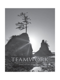 Teamwork Poster van Dennis Frates