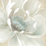 Winter Blooms I Poster von Carol Robinson