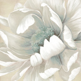 Winter Blooms II Poster von Carol Robinson
