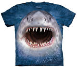 Youth: Wicked Nasty Shark T-Shirt