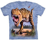 Youth: Striped Rex T-shirts