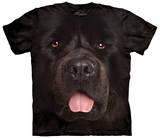 Big Face Newfie T-Shirts
