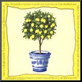 Lemons IV Mounted Print