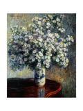 Asters, 1880 Giclée-tryk af Claude Monet
