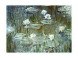 Nymphéas, 1910, (Ausschnitt) Giclée-Druck von Claude Monet