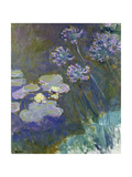 Waterlilies and Agapanthus, 1914-17 Giclée-Druck von Claude Monet