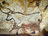 Cave of Lascaux, Great Hall, Left Wall: Second Bull, Below: Kneeling Red Cow, C. 17,000 BC Reproduction procédé giclée