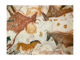 Cave of Lascaux, Ceiling of the Diverticulum: a Horse and Three Cows, C. 17,000 BC Giclée-tryk
