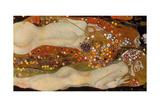 Water Serpents II, (Friends) 1904-07 Giclée-tryk af Gustav Klimt