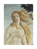 The Birth of Venus (Detail) Reproduction procédé giclée par Sandro Botticelli