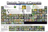 Periodic Table - Cannabis Prints