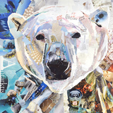 Polar Bear Poster by James Grey
